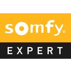 logosomfyexpert.jpg